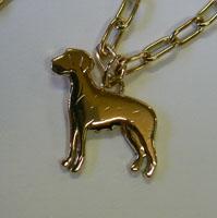 koira1